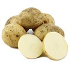 Pootgoed Nieks Witte kopen plantaardappelen