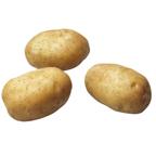 Pootgoed Michelle kopen plantaardappelen