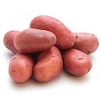 Pootgoed Texla kopen plantaardappelen