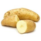 Pootgoed Ratte kopen plantaardappelen